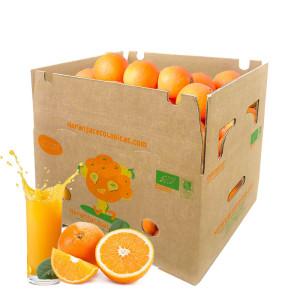 Caja 10 Kg Naranjas Mesa y Zumo