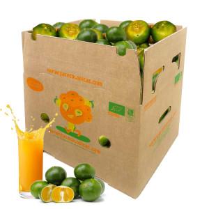 Caja 15 Kg de Mandarinas para Zumo
