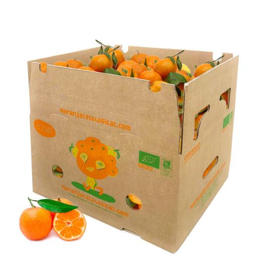 Caja 10 Kg de Mandarinas